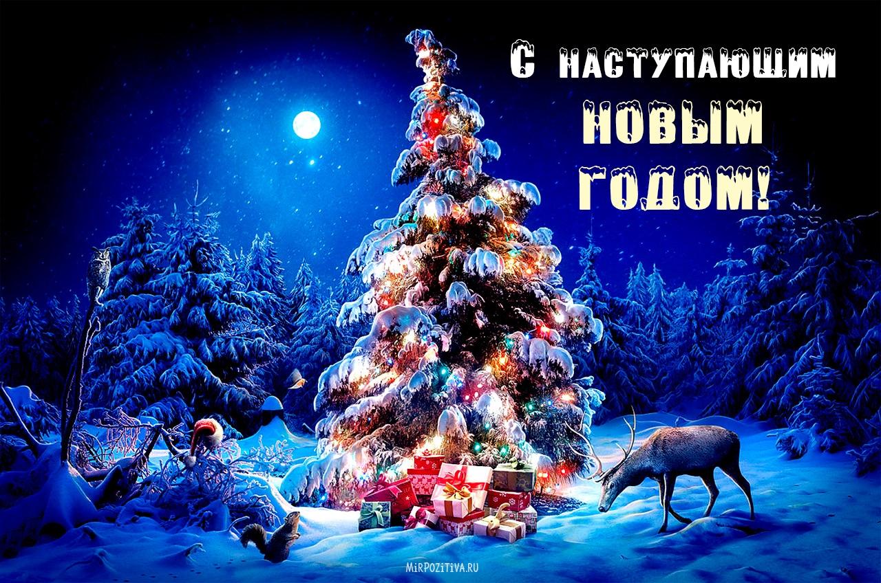С наступающим Новым годом вас друзья.